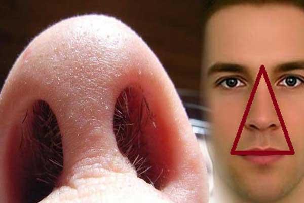 tác hại nhổ lông mũi, tác hại của nhổ lông mũi, tác hại việc nhổ lông mũi, tác hại của việc nhổ lông mũi